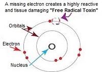 Detoxification helps eliminate tissue damaging free radical toxins
